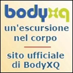 Link-BodyXQ